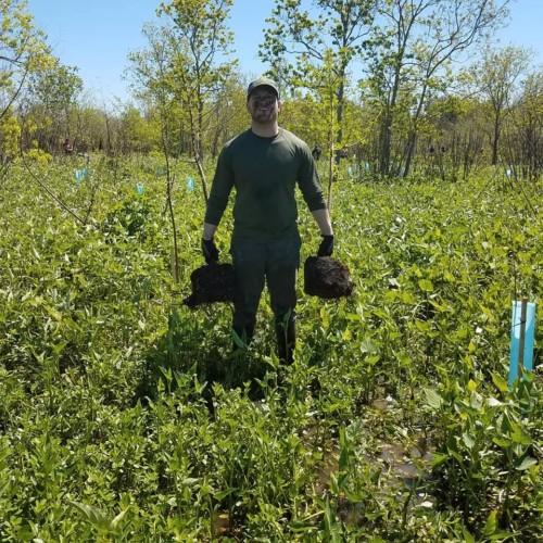 Volunteer Planting Trees