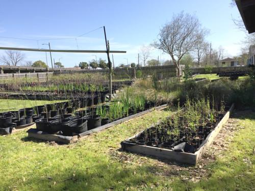 Cabane Coypu facility and garden